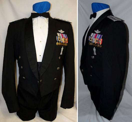 Carlton Mess Dress1.jpg
